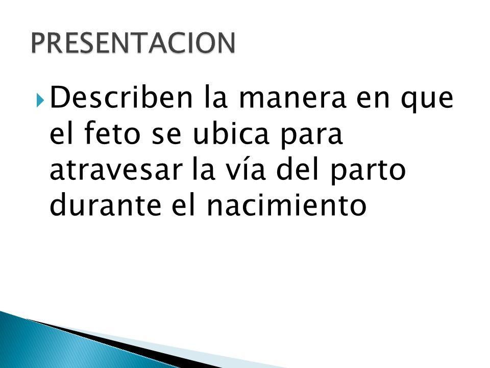 PRESENTACION Describen la manera en que el feto se ubica para atravesar la vía del parto durante el nacimiento.