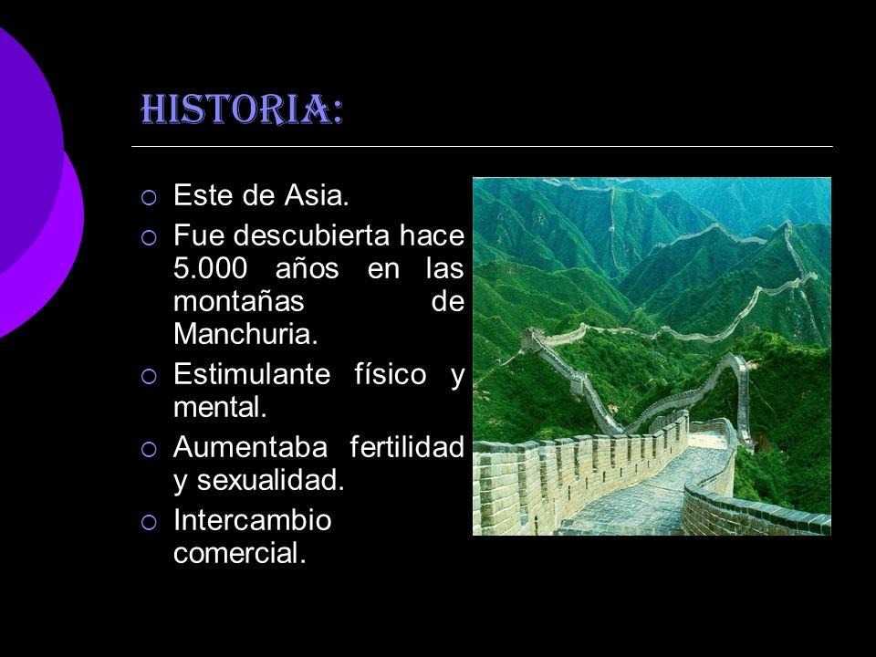 HISTORIA:Este de Asia. Fue descubierta hace 5.000 años en las montañas de Manchuria. Estimulante físico y mental.