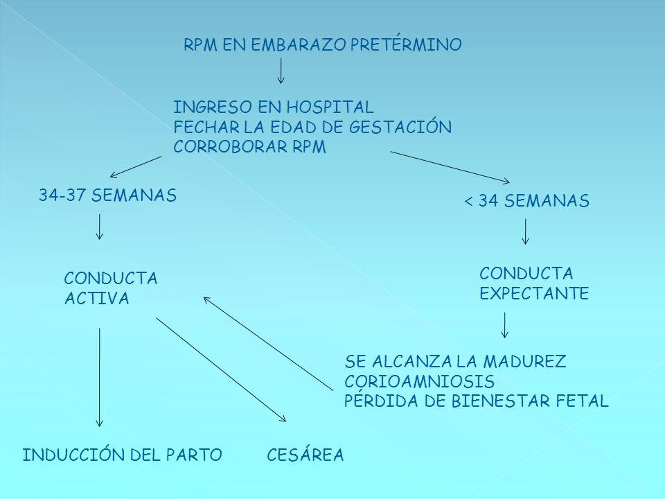 RPM EN EMBARAZO PRETÉRMINO