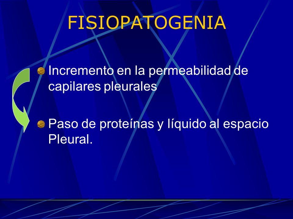 FISIOPATOGENIA Incremento en la permeabilidad de capilares pleurales