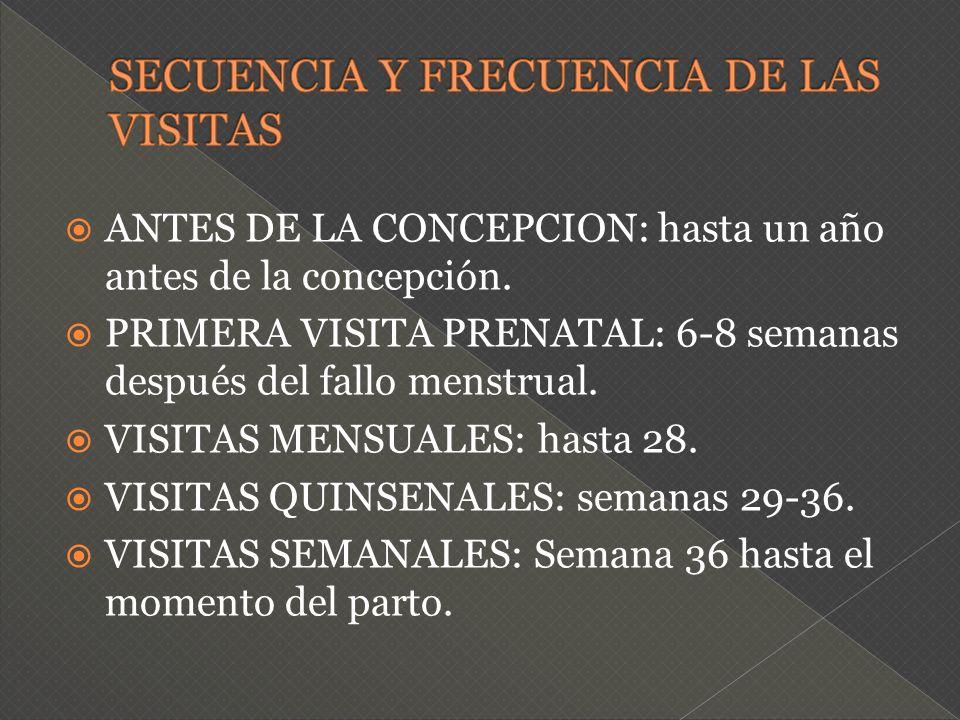 SECUENCIA Y FRECUENCIA DE LAS VISITAS