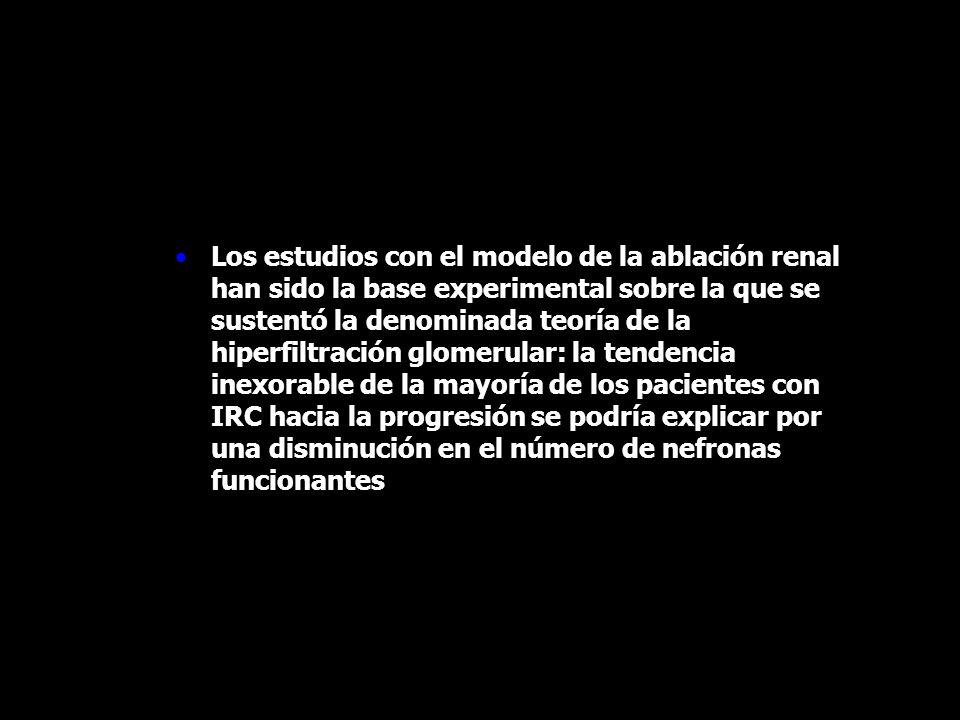 Los estudios con el modelo de la ablación renal han sido la base experimental sobre la que se sustentó la denominada teoría de la hiperfiltración glomerular: la tendencia inexorable de la mayoría de los pacientes con IRC hacia la progresión se podría explicar por una disminución en el número de nefronas funcionantes