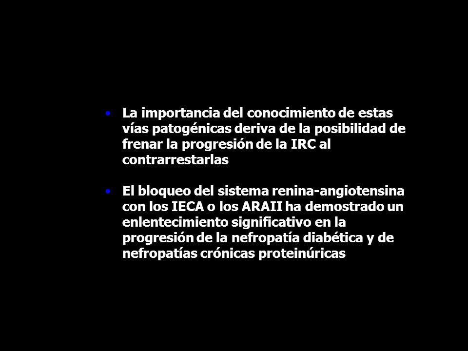 La importancia del conocimiento de estas vías patogénicas deriva de la posibilidad de frenar la progresión de la IRC al contrarrestarlas