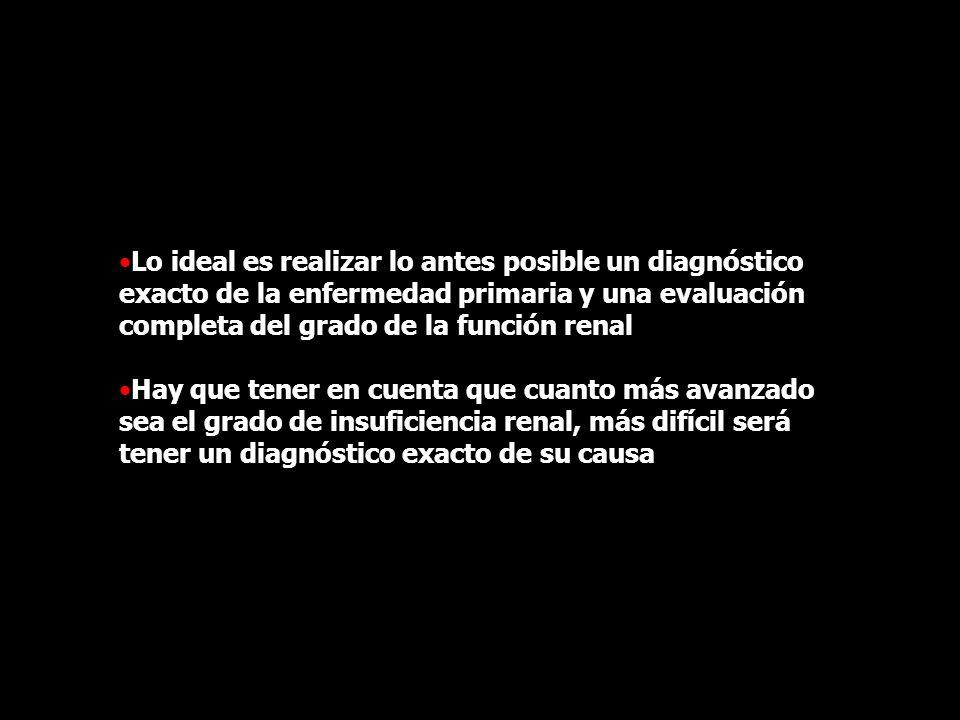 Lo ideal es realizar lo antes posible un diagnóstico exacto de la enfermedad primaria y una evaluación completa del grado de la función renal