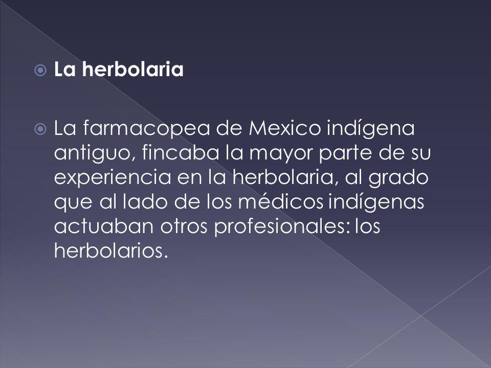 La herbolaria