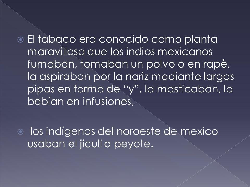 El tabaco era conocido como planta maravillosa que los indios mexicanos fumaban, tomaban un polvo o en rapè, la aspiraban por la nariz mediante largas pipas en forma de y , la masticaban, la bebían en infusiones,