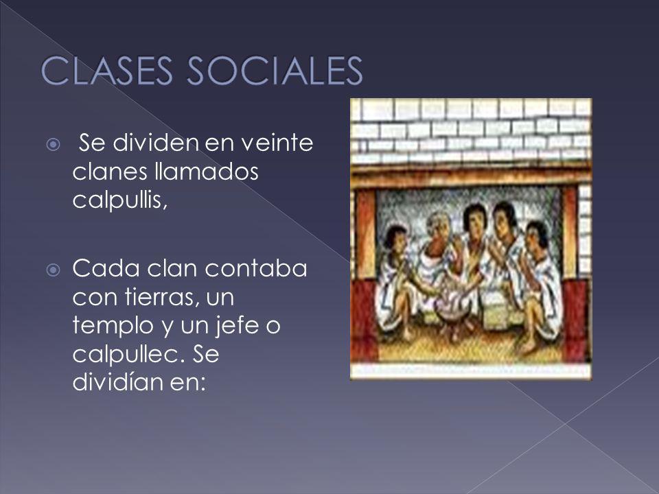 CLASES SOCIALES Se dividen en veinte clanes llamados calpullis,