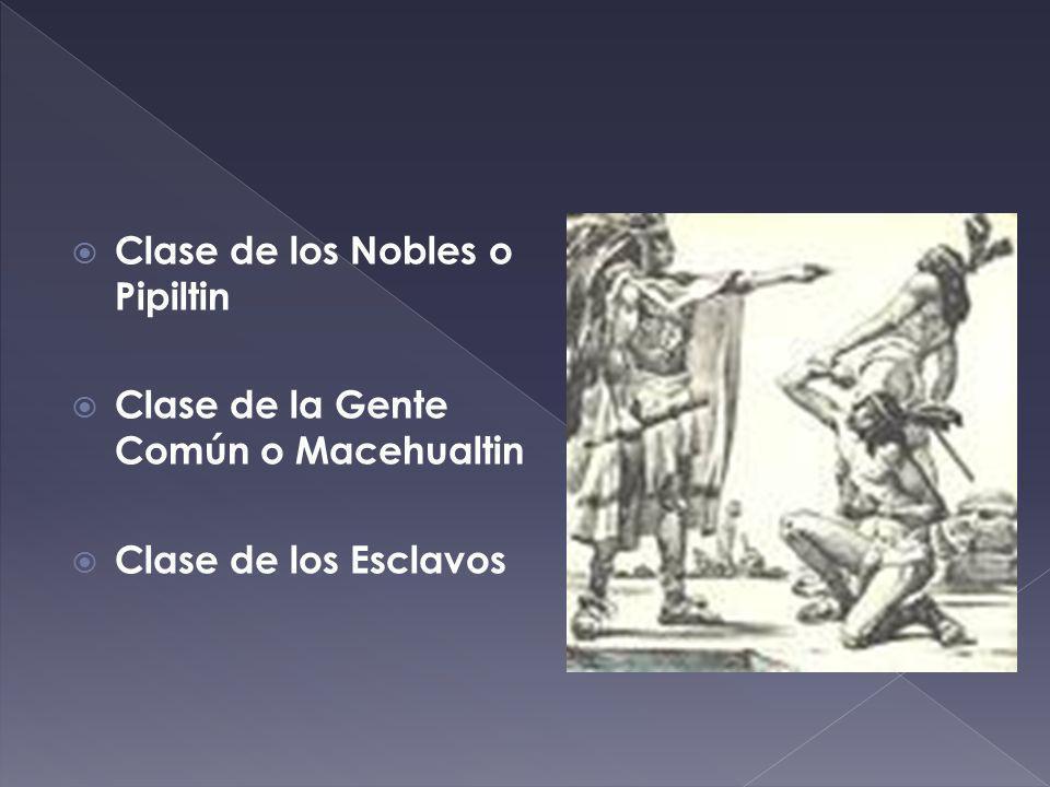 Clase de los Nobles o Pipiltin