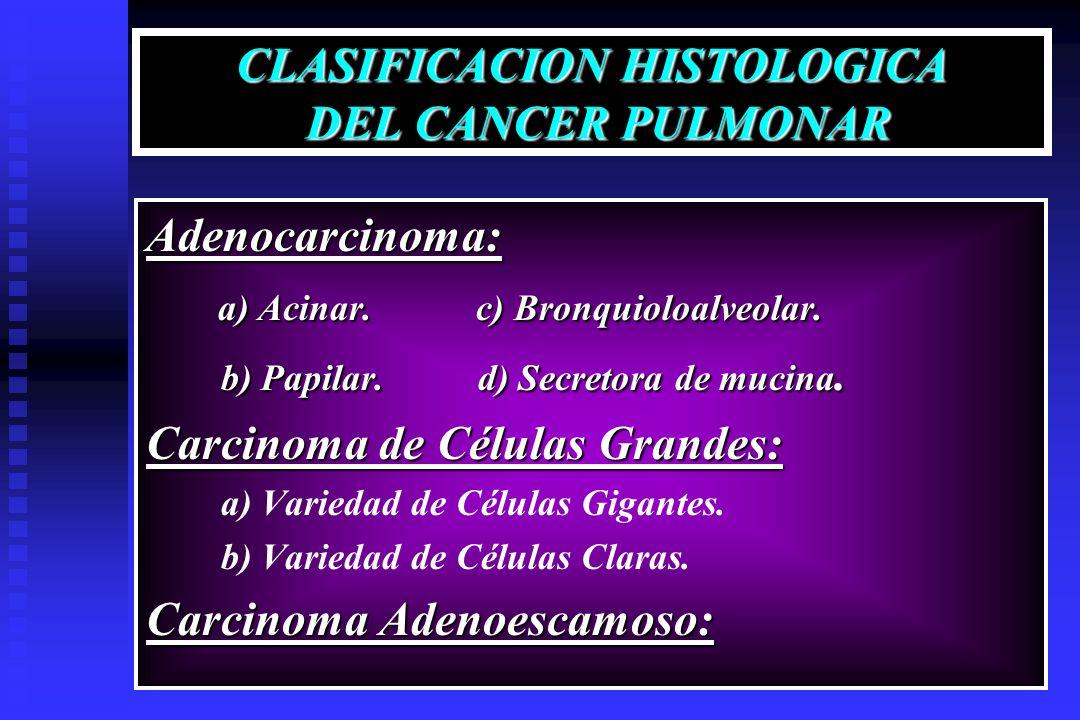CLASIFICACION HISTOLOGICA DEL CANCER PULMONAR