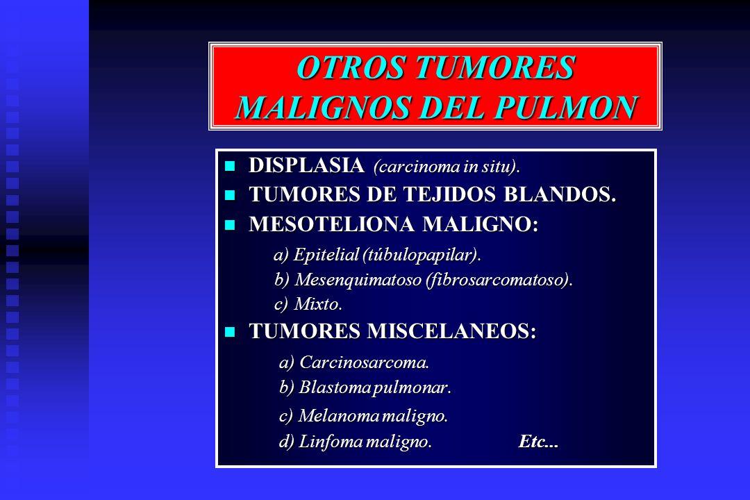 OTROS TUMORES MALIGNOS DEL PULMON