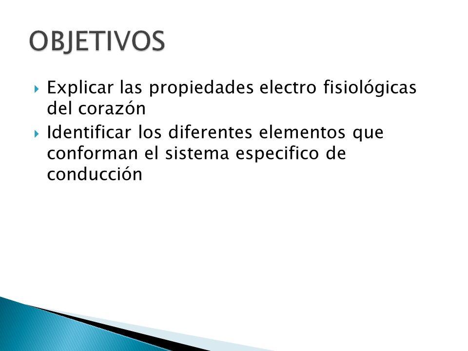 OBJETIVOS Explicar las propiedades electro fisiológicas del corazón