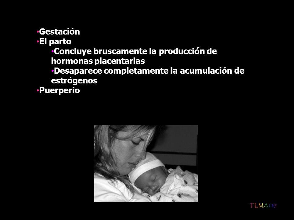 Gestación El parto. Concluye bruscamente la producción de hormonas placentarias. Desaparece completamente la acumulación de estrógenos.