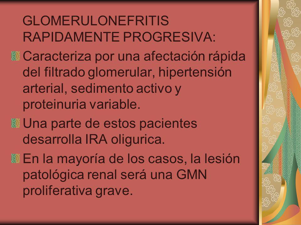 GLOMERULONEFRITIS RAPIDAMENTE PROGRESIVA: