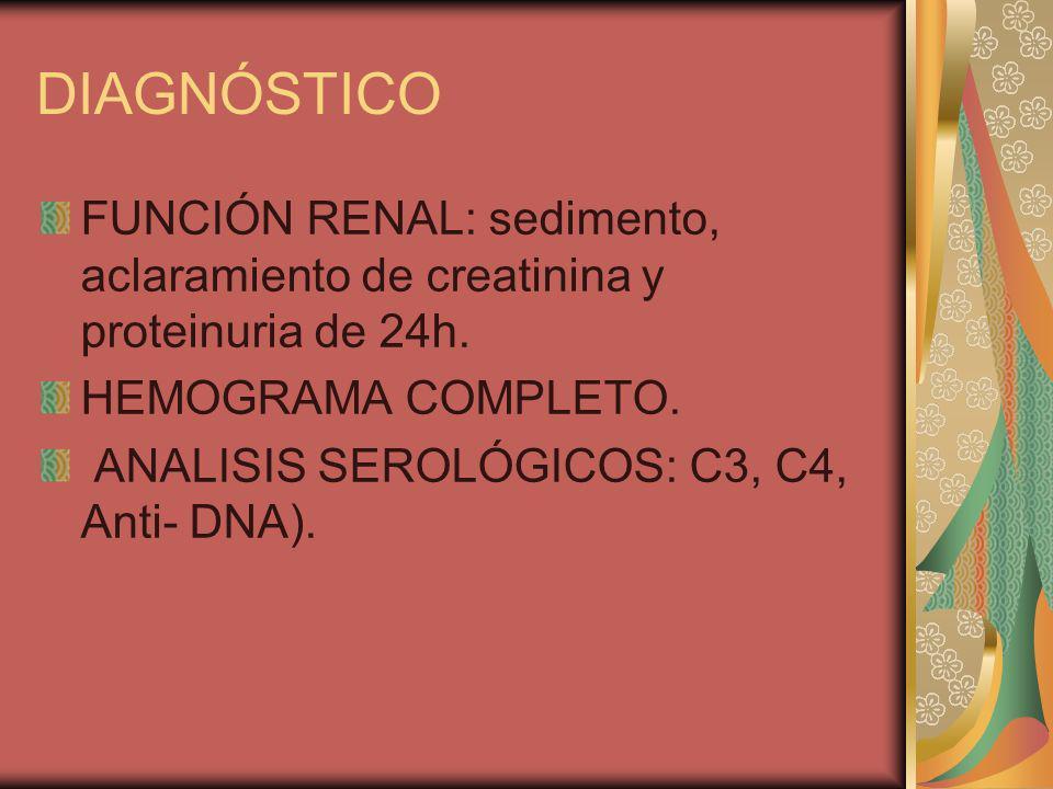DIAGNÓSTICO FUNCIÓN RENAL: sedimento, aclaramiento de creatinina y proteinuria de 24h. HEMOGRAMA COMPLETO.