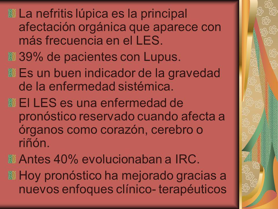 La nefritis lúpica es la principal afectación orgánica que aparece con más frecuencia en el LES.