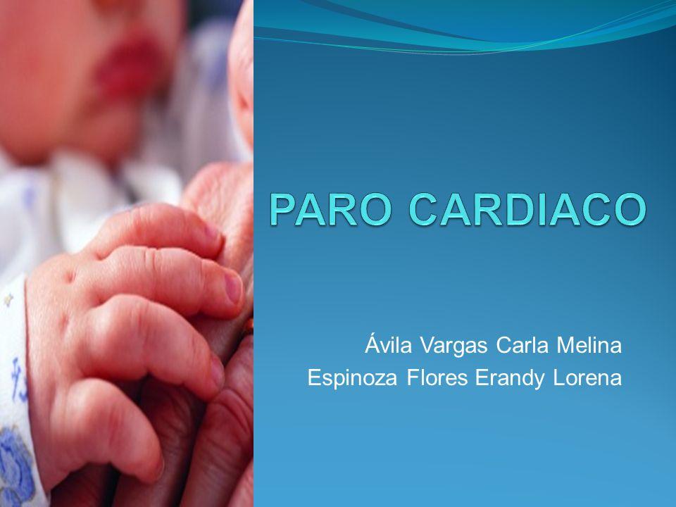 Ávila Vargas Carla Melina Espinoza Flores Erandy Lorena