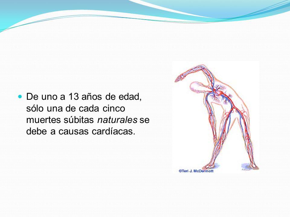 De uno a 13 años de edad, sólo una de cada cinco muertes súbitas naturales se debe a causas cardíacas.