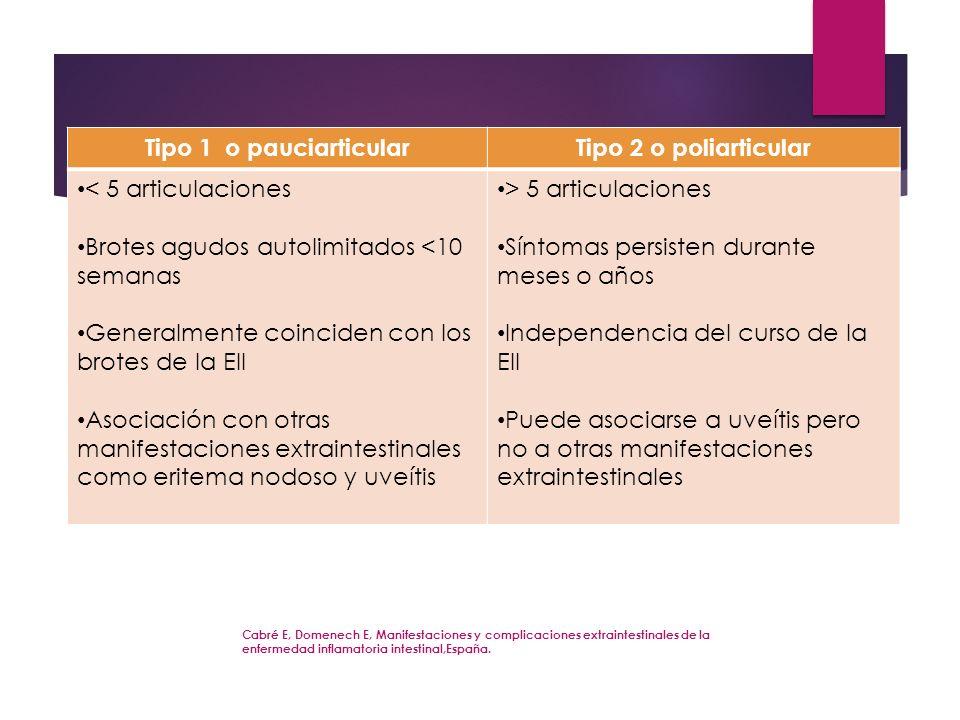 Tipo 1 o pauciarticular Tipo 2 o poliarticular