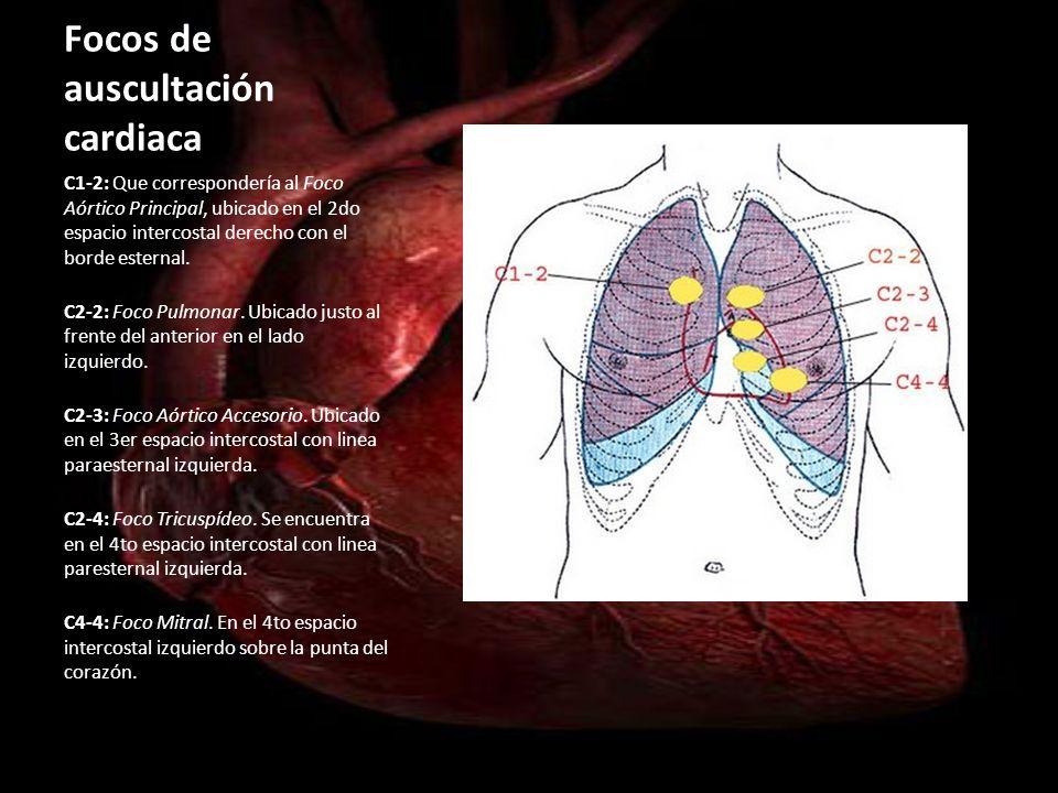 Focos de auscultación cardiaca
