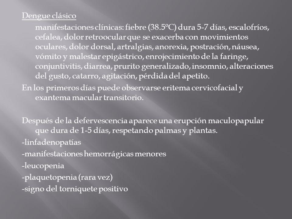 Dengue clásico manifestaciones clínicas: fiebre (38