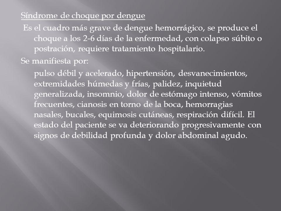 Síndrome de choque por dengue Es el cuadro más grave de dengue hemorrágico, se produce el choque a los 2-6 días de la enfermedad, con colapso súbito o postración, requiere tratamiento hospitalario.