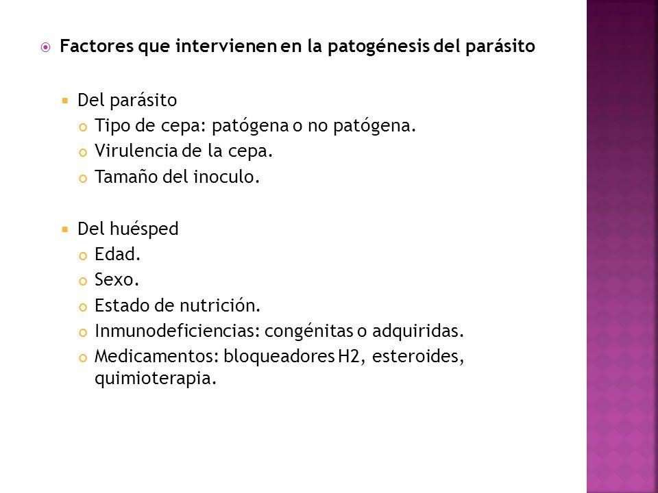 Factores que intervienen en la patogénesis del parásito