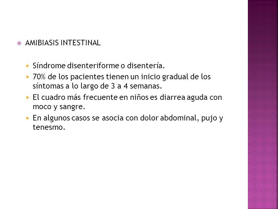 AMIBIASIS INTESTINAL Síndrome disenteriforme o disentería.