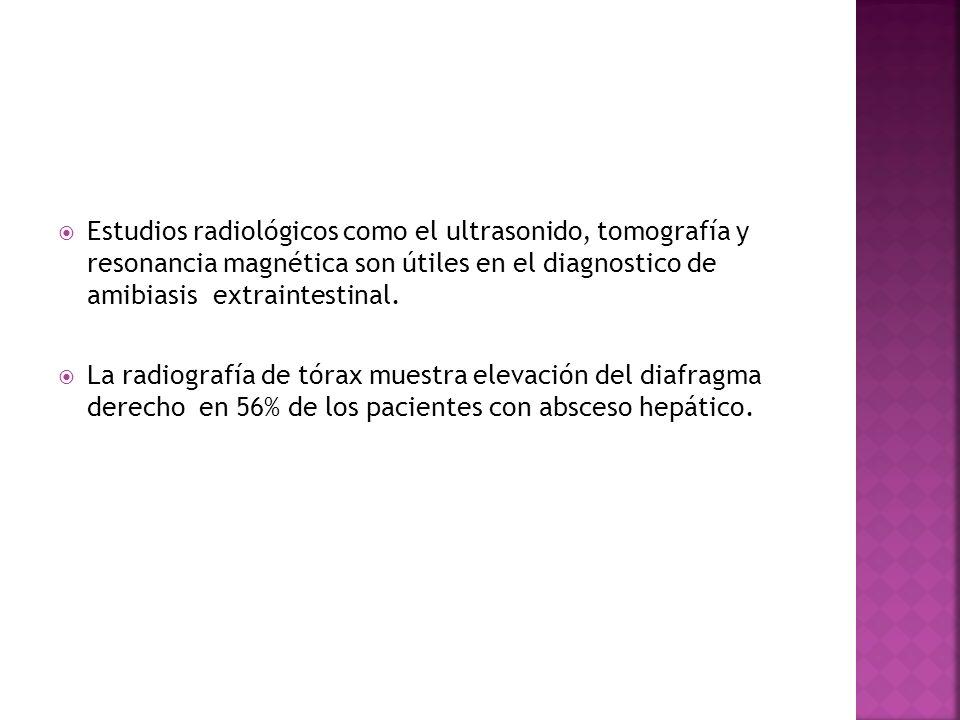 Estudios radiológicos como el ultrasonido, tomografía y resonancia magnética son útiles en el diagnostico de amibiasis extraintestinal.