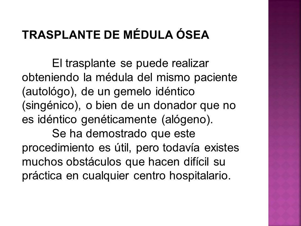 TRASPLANTE DE MÉDULA ÓSEA