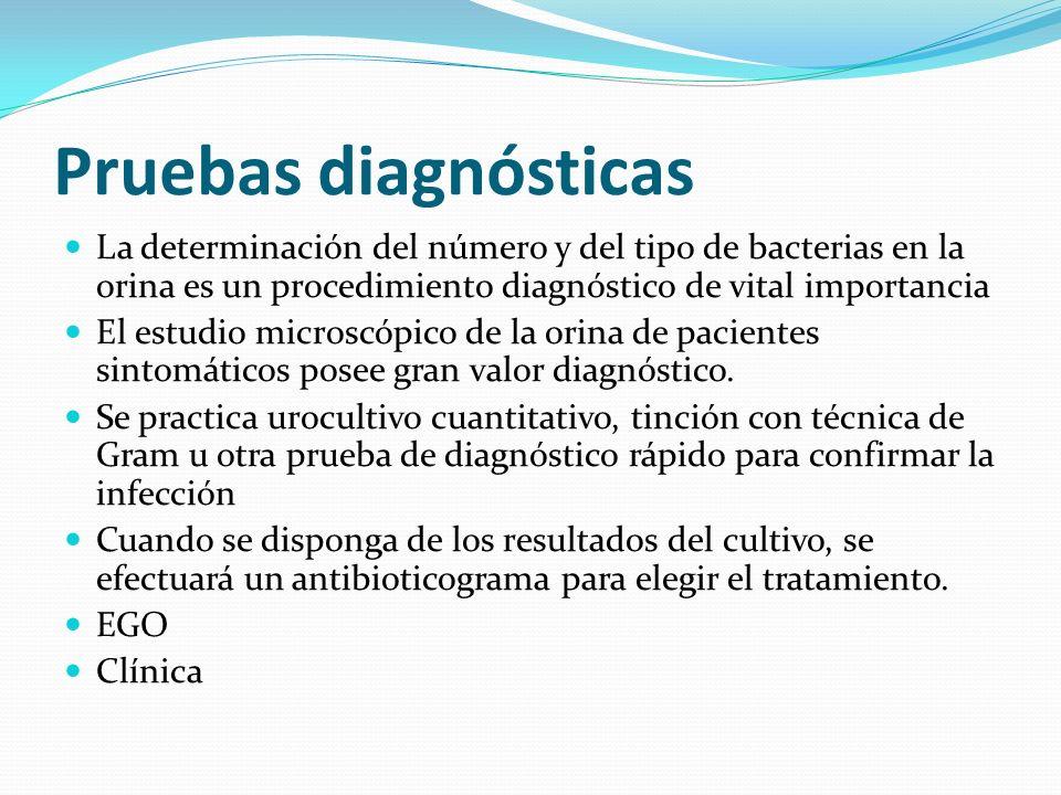 Pruebas diagnósticas La determinación del número y del tipo de bacterias en la orina es un procedimiento diagnóstico de vital importancia.
