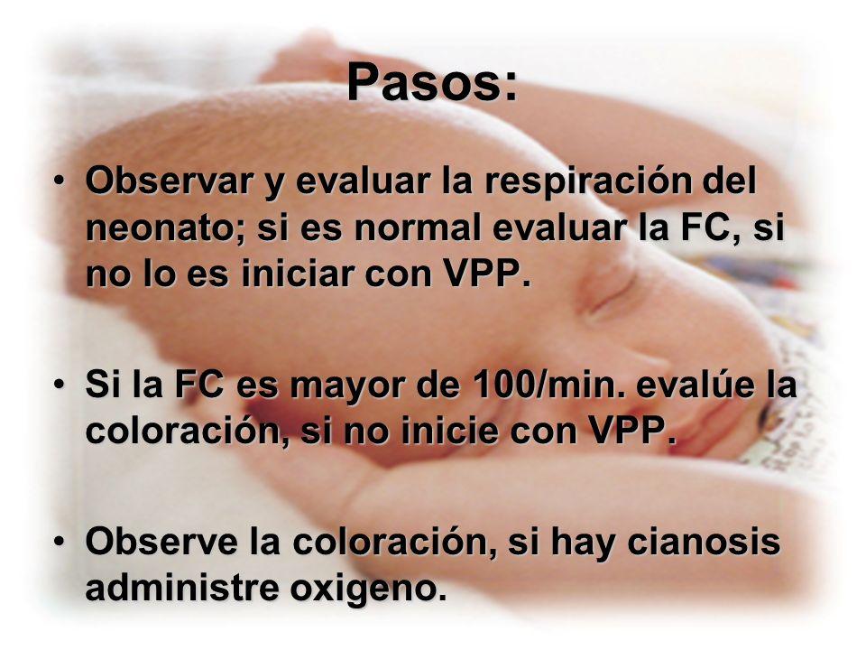 Pasos:Observar y evaluar la respiración del neonato; si es normal evaluar la FC, si no lo es iniciar con VPP.