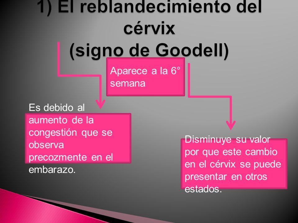 1) El reblandecimiento del cérvix (signo de Goodell)
