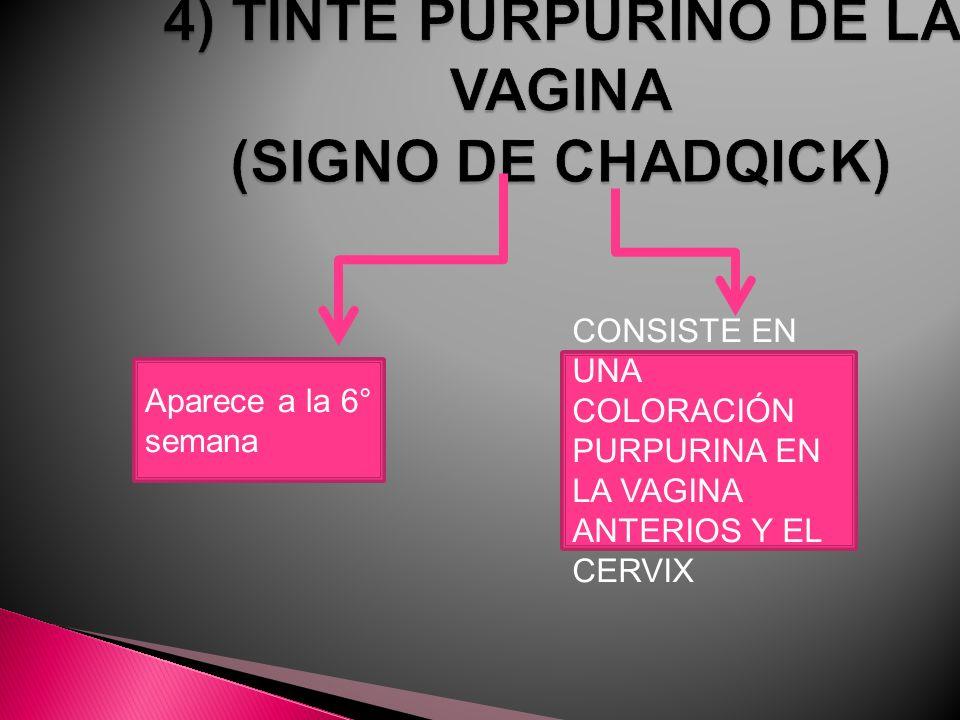 4) TINTE PURPURINO DE LA VAGINA (SIGNO DE CHADQICK)