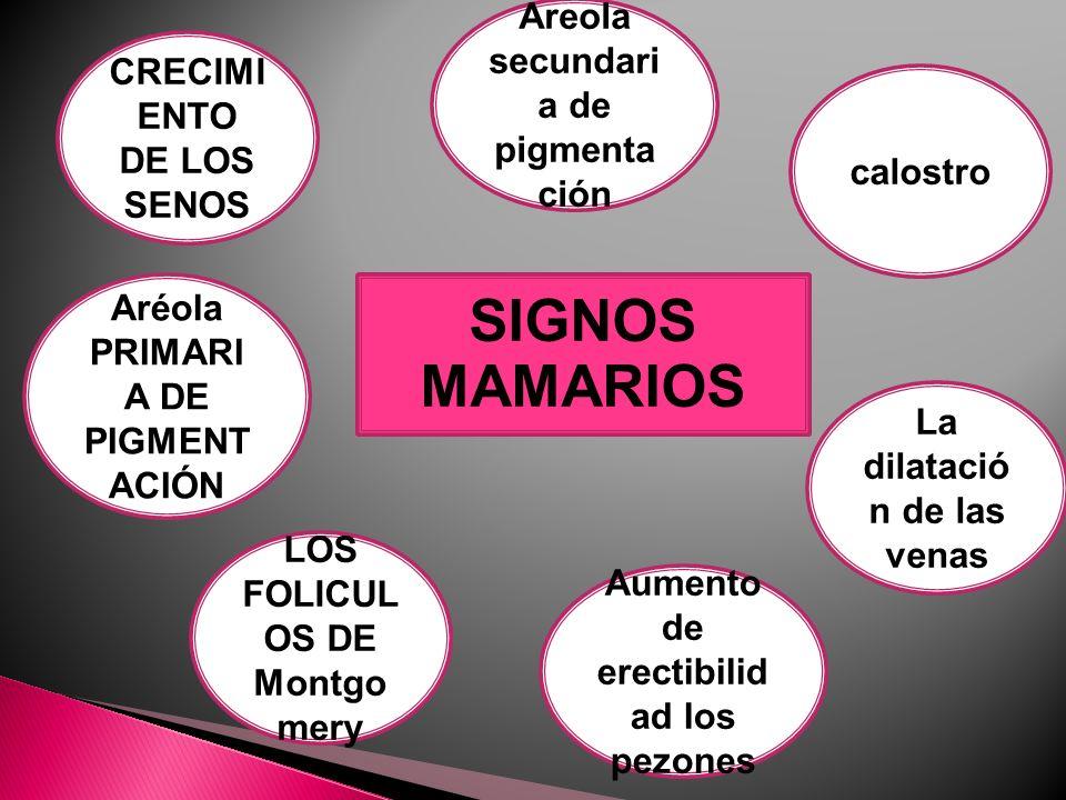 SIGNOS MAMARIOS Areola secundaria de pigmentación