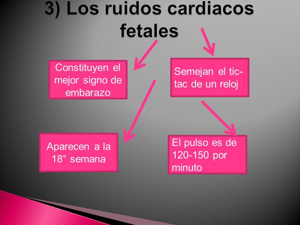 3) Los ruidos cardiacos fetales
