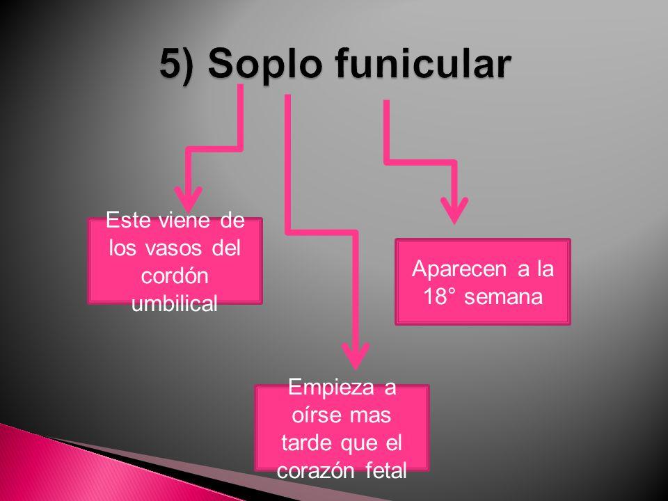 5) Soplo funicular Este viene de los vasos del cordón umbilical