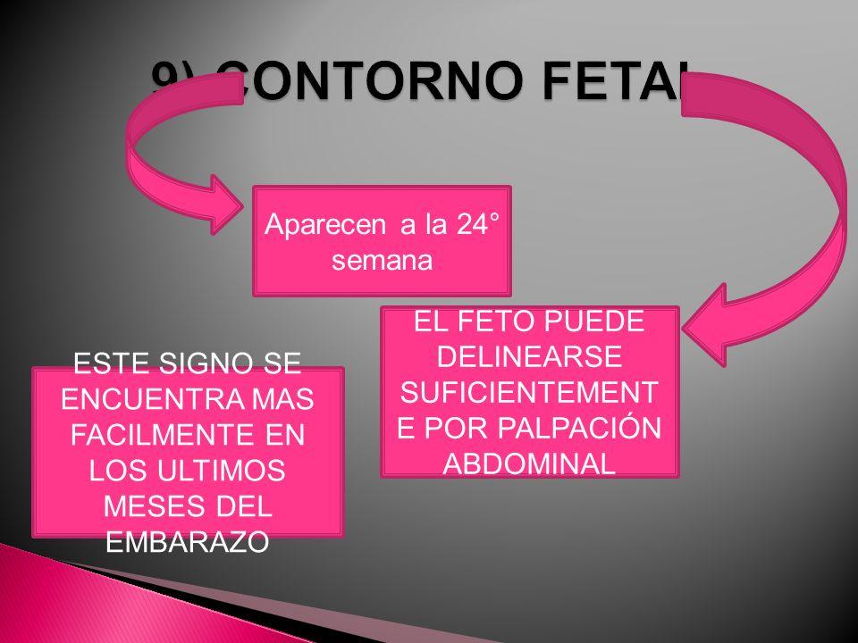 EL FETO PUEDE DELINEARSE SUFICIENTEMENTE POR PALPACIÓN ABDOMINAL
