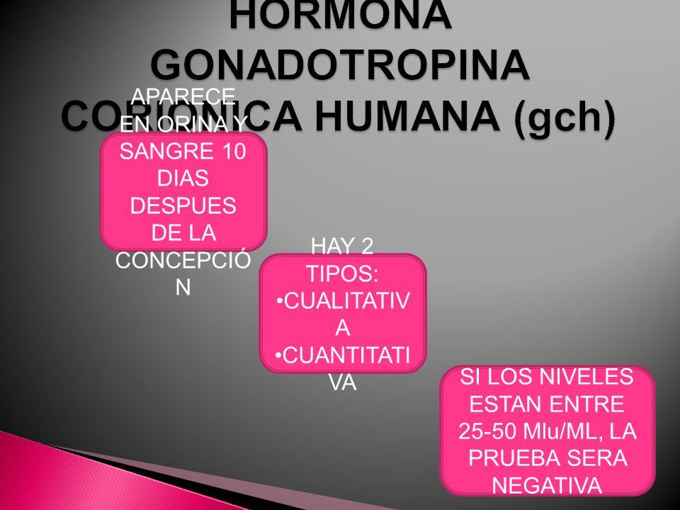 HORMONA GONADOTROPINA CORIONICA HUMANA (gch)