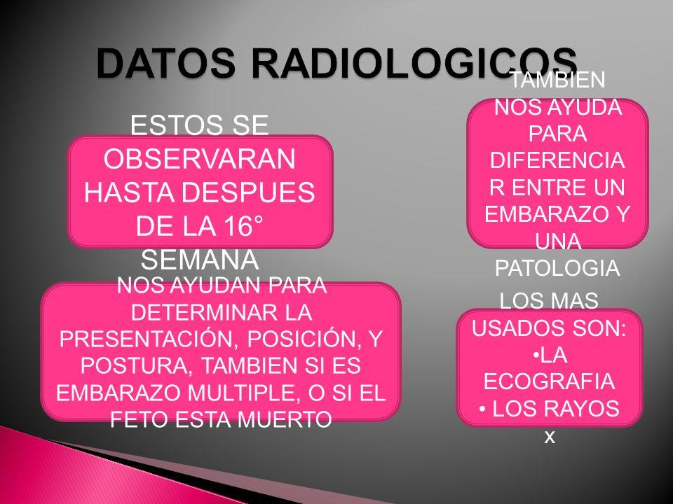 DATOS RADIOLOGICOS ESTOS SE OBSERVARAN HASTA DESPUES DE LA 16° SEMANA