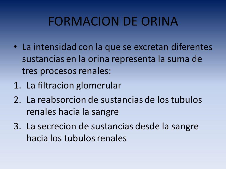 FORMACION DE ORINA La intensidad con la que se excretan diferentes sustancias en la orina representa la suma de tres procesos renales: