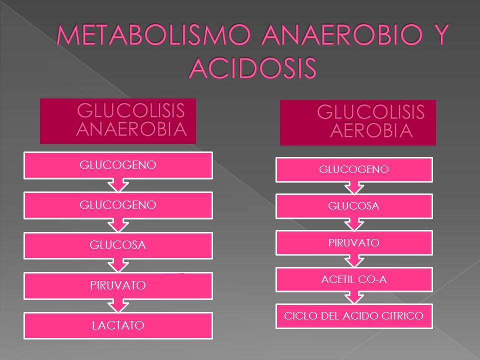 METABOLISMO ANAEROBIO Y ACIDOSIS