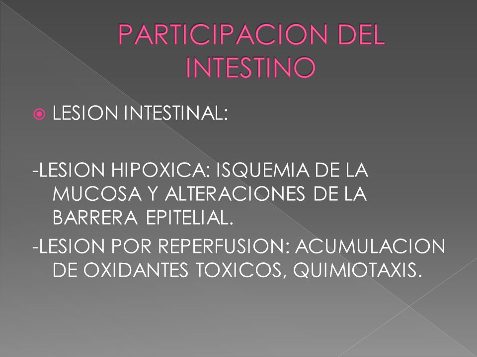 PARTICIPACION DEL INTESTINO