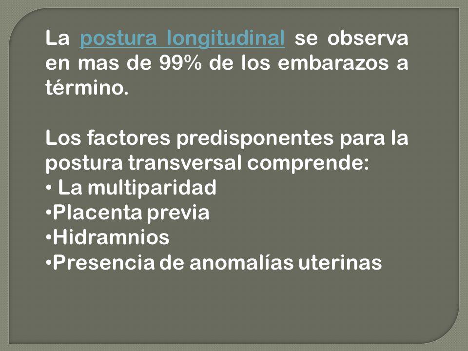 La postura longitudinal se observa en mas de 99% de los embarazos a término.