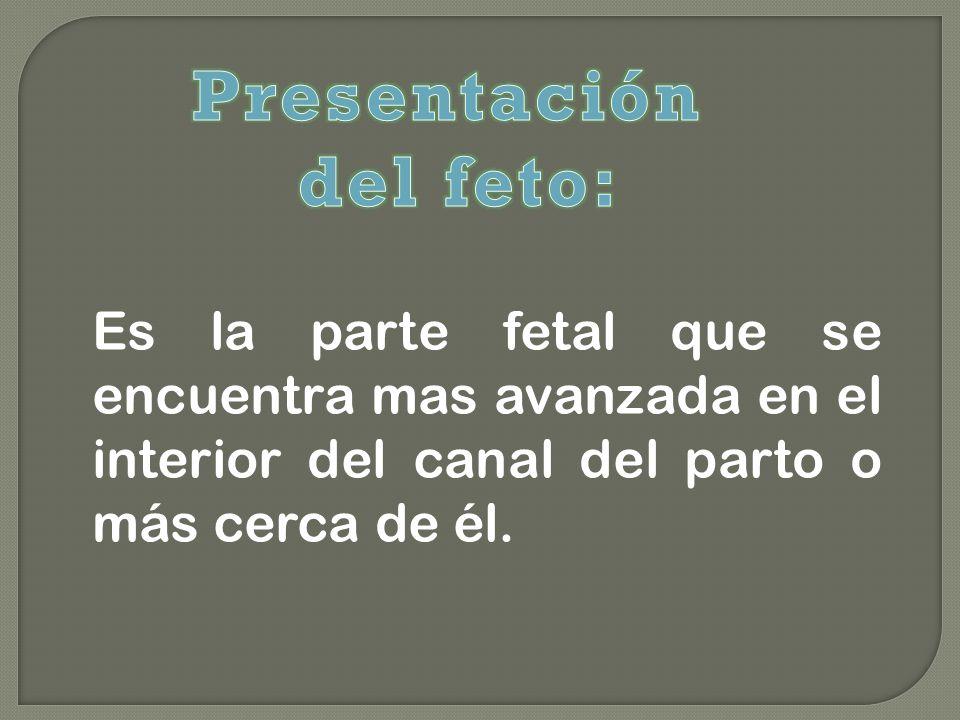 Presentación del feto: