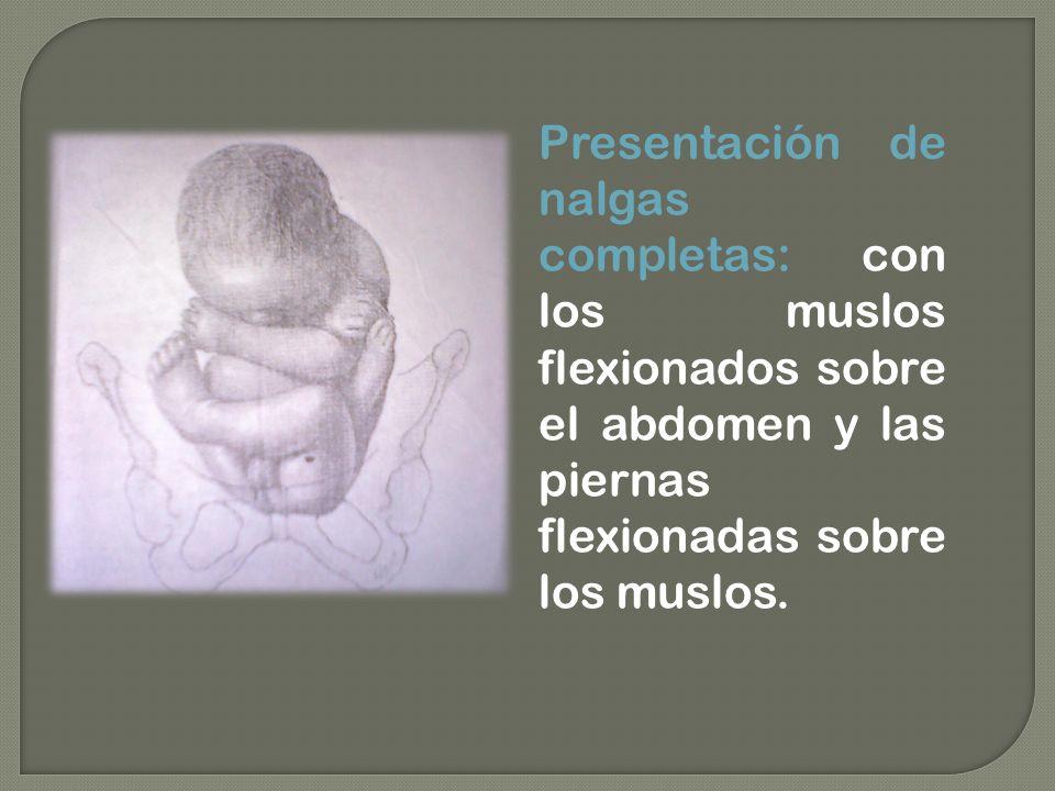 Presentación de nalgas completas: con los muslos flexionados sobre el abdomen y las piernas flexionadas sobre los muslos.