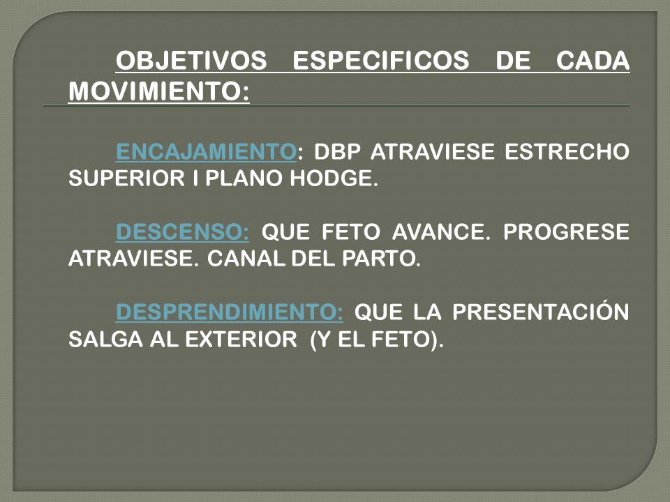 OBJETIVOS ESPECIFICOS DE CADA MOVIMIENTO: