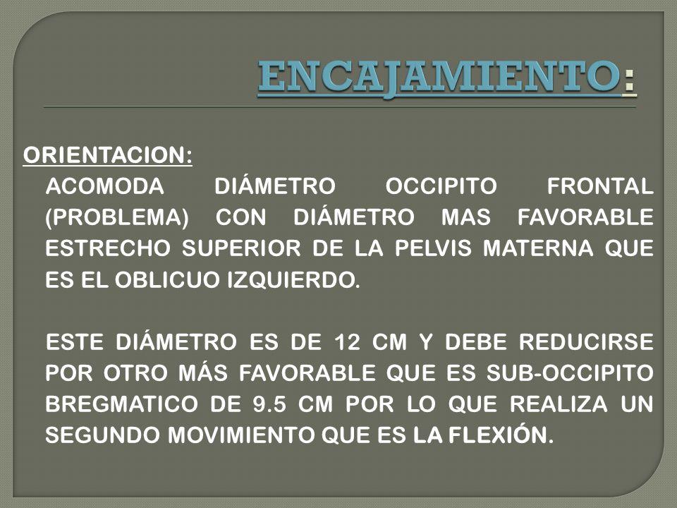 ENCAJAMIENTO: