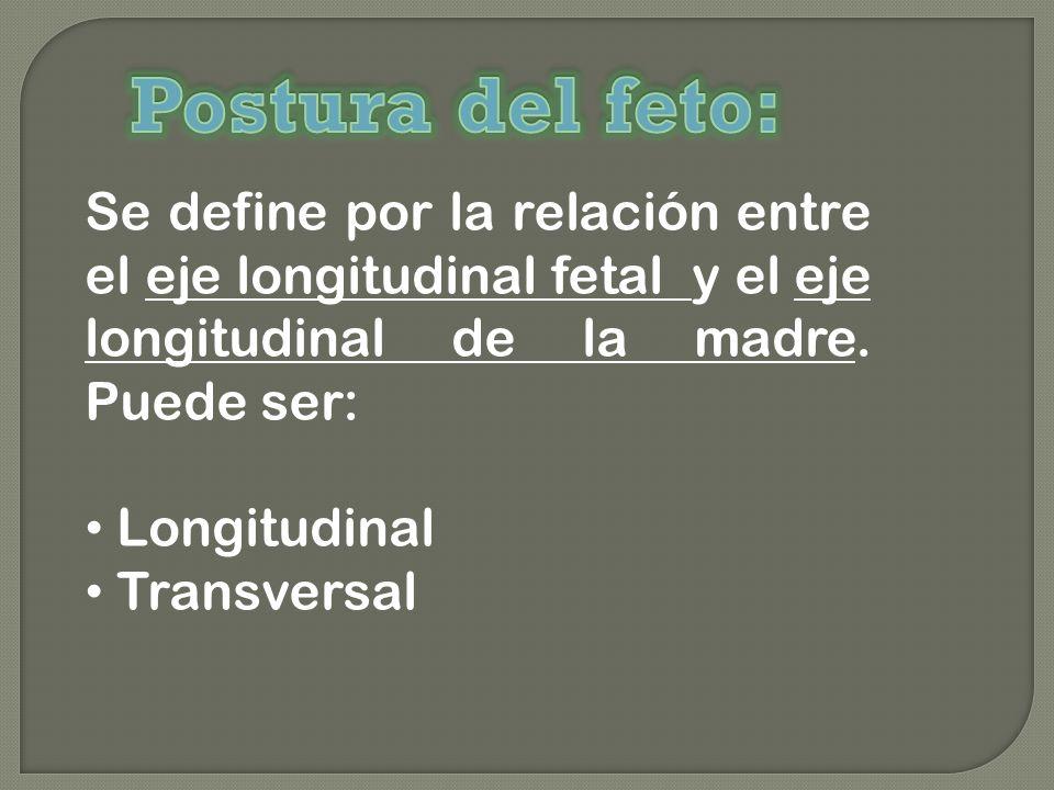 Postura del feto: Se define por la relación entre el eje longitudinal fetal y el eje longitudinal de la madre. Puede ser: