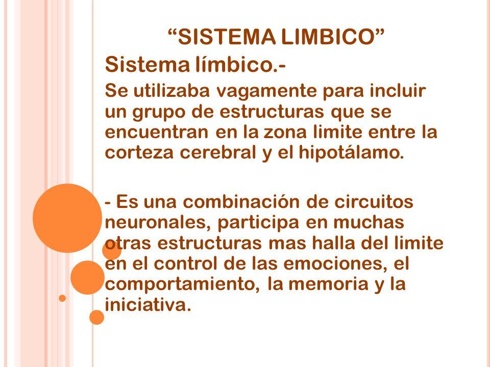 SISTEMA LIMBICO Sistema límbico.-