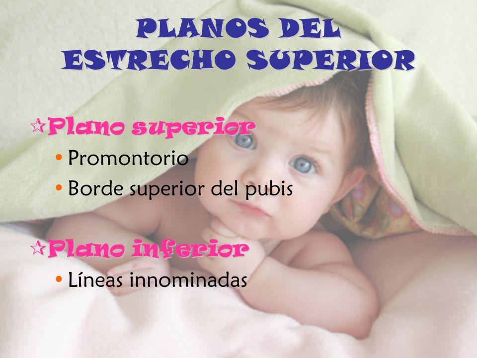 PLANOS DEL ESTRECHO SUPERIOR